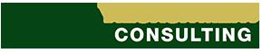 PIUS Consulting Logo